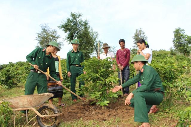 Bộ đội giúp dân xóa đói giảm nghèo, phát triển kinh tế