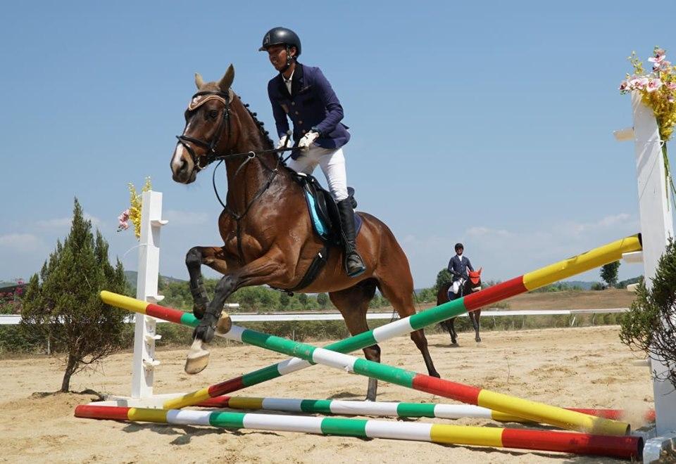 Ra mắt Câu lạc bộ cưỡi ngựa Olympic