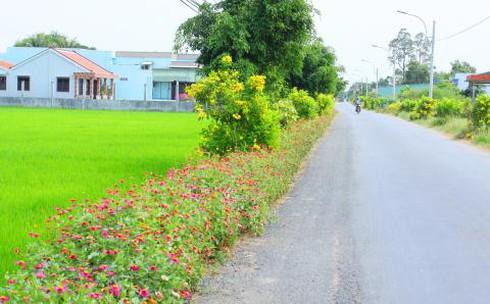 Huyện Châu Thành Long An đạt chuẩn nông thôn mới