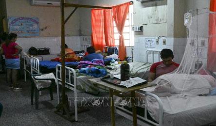 Cảnh báo nguy cơ lây lan dịch sốt xuất huyết tại Mỹ Latinh