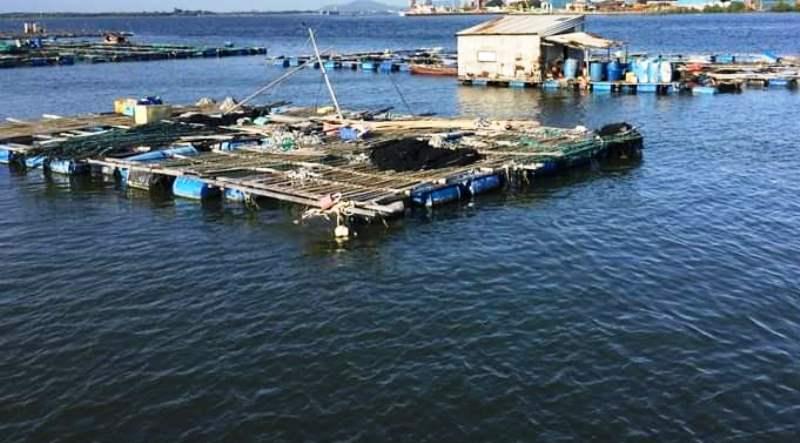 Bạc Liêu hỗ trợ nông dân nuôi trồng thủy sản an toàn thực phẩm đảm bảo tiêu chuẩn xuất khẩu