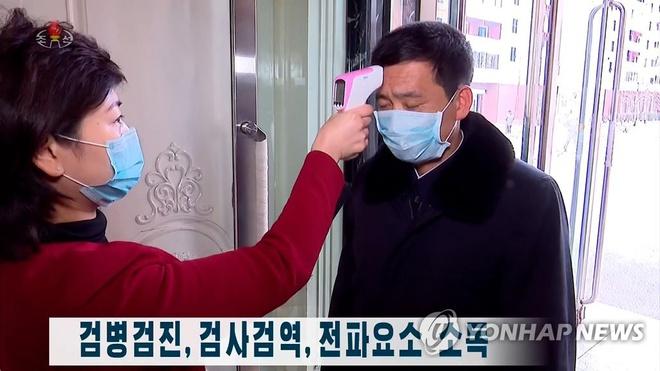 WHO viện trợ Triều Tiên chống dịch COVID-19