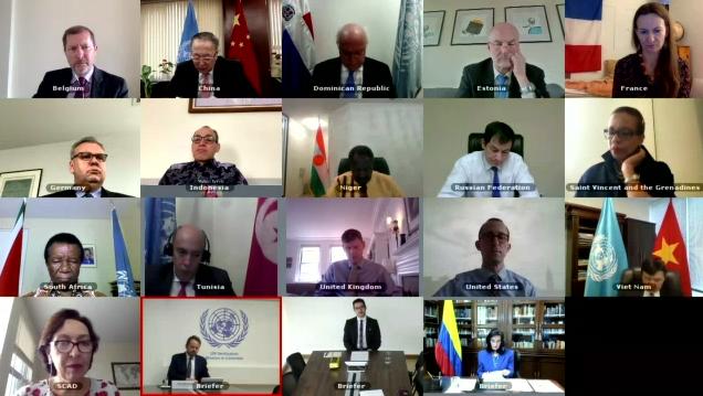Hội đồng Bảo an LHQ họp trực tuyến về vấn đề vũ khí hoá học tại Syria
