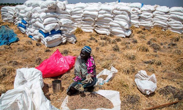LHQ cảnh báo tình trạng mất an ninh lương thực gia tăng từ trước dịch COVID-19