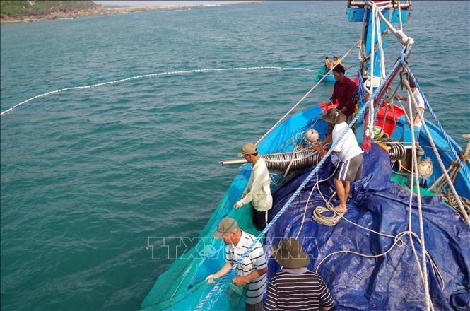 Sự thay đổi các yếu tố môi trường ở vùng biển Việt Nam