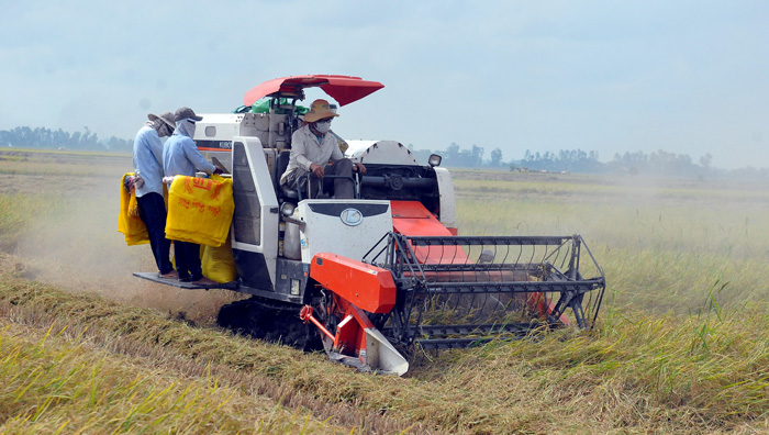 Tiếp tục đề xuất miễn thuế đất nông nghiệp để phát triển kinh tế