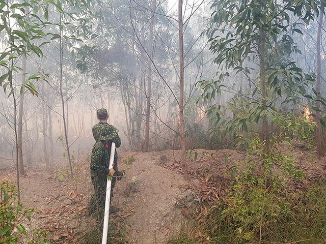 Cơ bản khống chế vụ cháy rừng nghiêm trọng