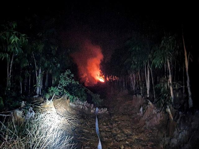 Kiên Giang Cháy rừng nghiêm trọng tại Hòn Đất