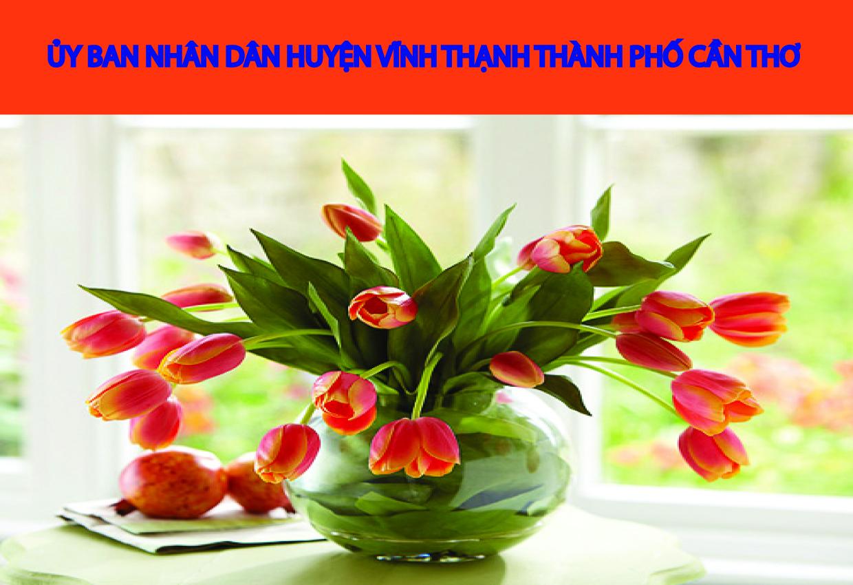 Xây dựng Đảng bộ huyện Vĩnh Thạnh trong sạch, vững mạnh
