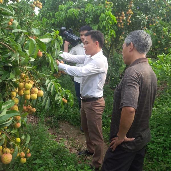 WB hỗ trợ Việt Nam tạo nền tảng cho nền kinh tế thu nhập cao
