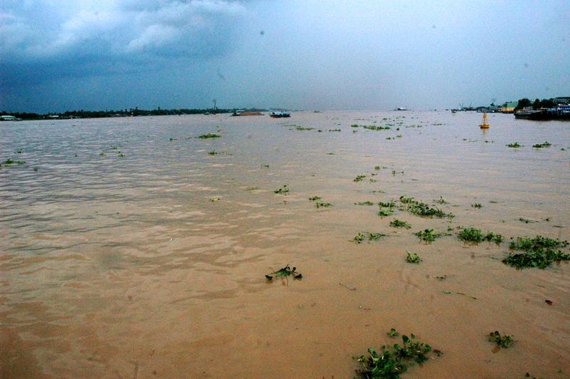 Cần đề phòng xảy ra sự cố khi lũ Đồng bằng sông Cửu Long lên nhanh