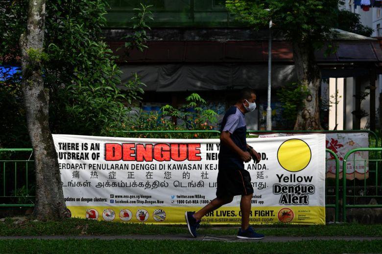 Bùng phát dịch sốt xuất huyết tại Singapore