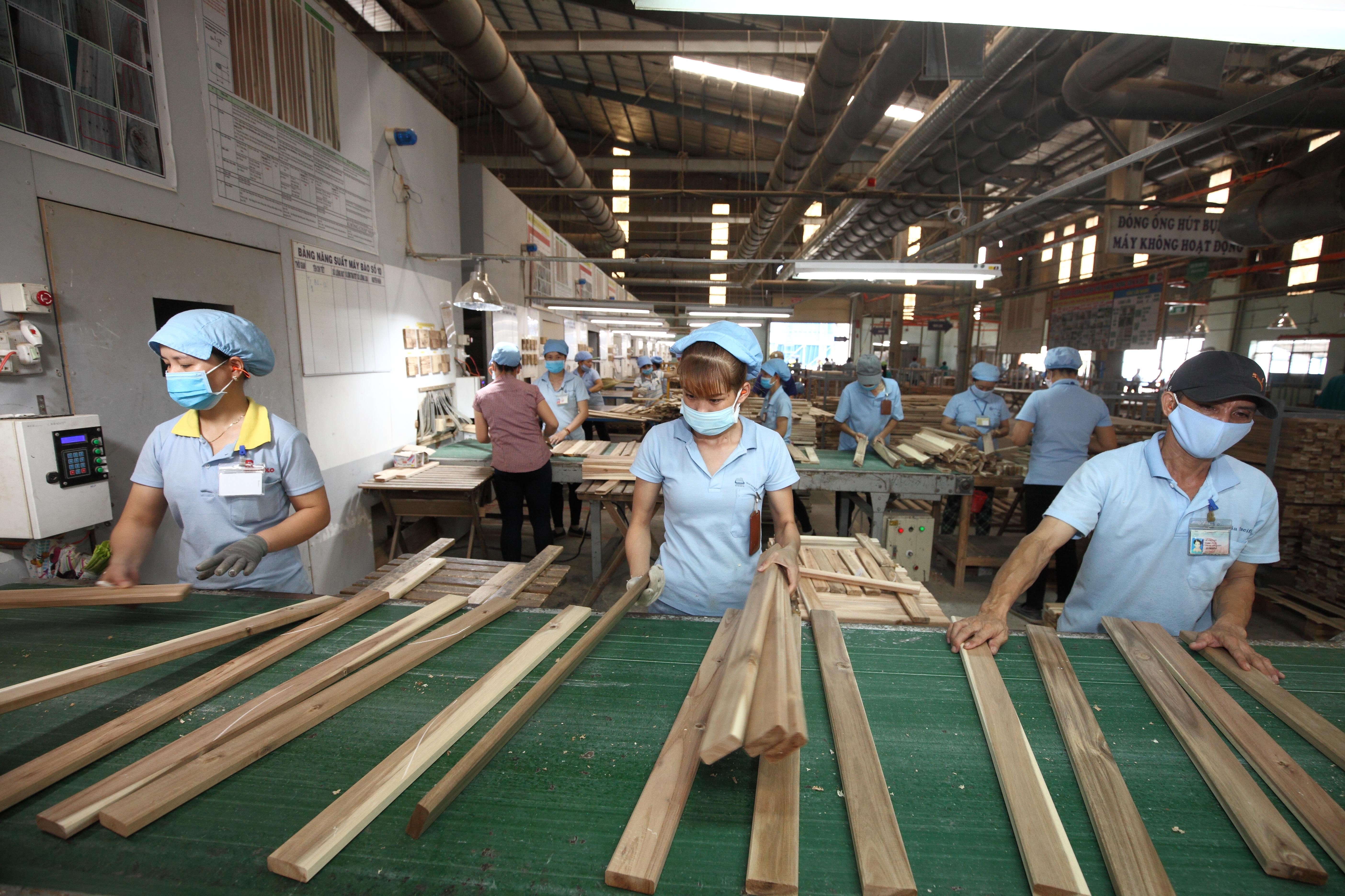 Cơ hội nào cho tăng trưởng ngành gỗ và lâm sản
