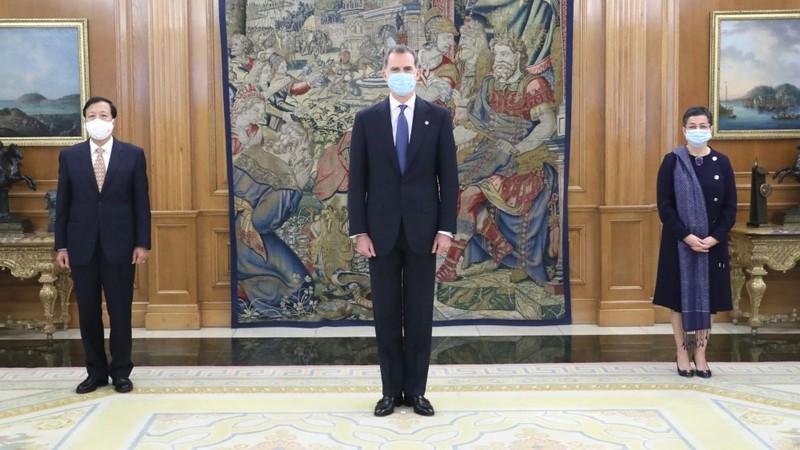 Đại sứ Hoàng Xuân Hải trình Quốc thư lên Nhà vua Tây Ban Nha Felipe VI