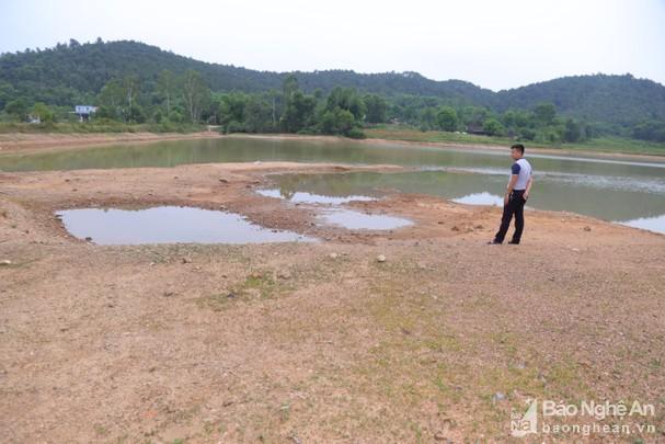 Nghệ An Hơn 3 800 ha lúa Hè Thu bị thiếu nước vì nắng hạn
