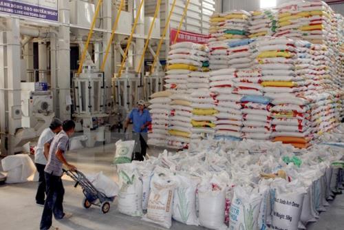 Giá trị xuất khẩu gạo tăng mạnh trong 6 tháng đầu năm