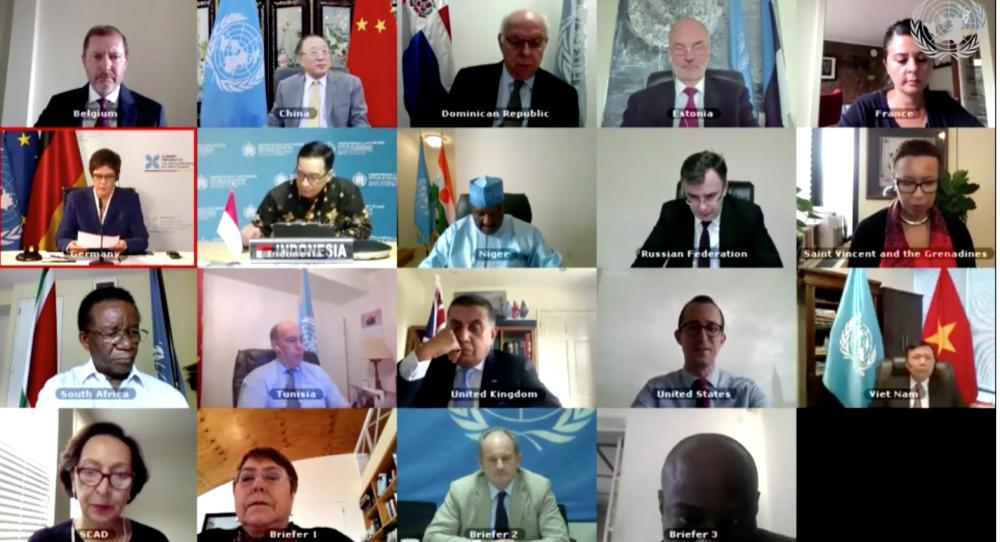 HĐBA họp trực tuyến về hoạt động hoà bình và quyền con người