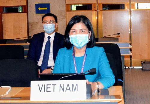 Việt Nam cam kết bảo vệ và thúc đẩy quyền con người
