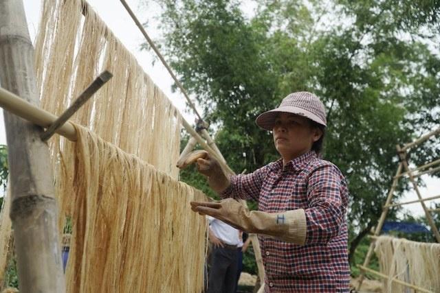 Kỳ vọng sợi chuối Việt Nam vươn tầm thế giới