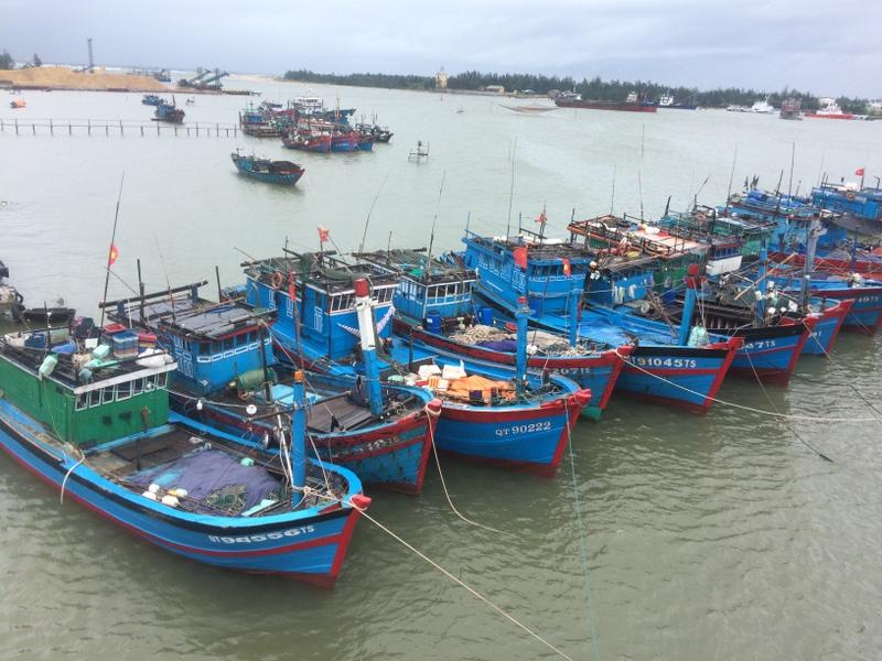 Nhiều địa phương cấm biển để ứng phó với bão số 2