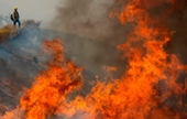 Mỹ Hơn 8000 héc-ta rừng bị thiêu rụi bởi cháy rừng ở California