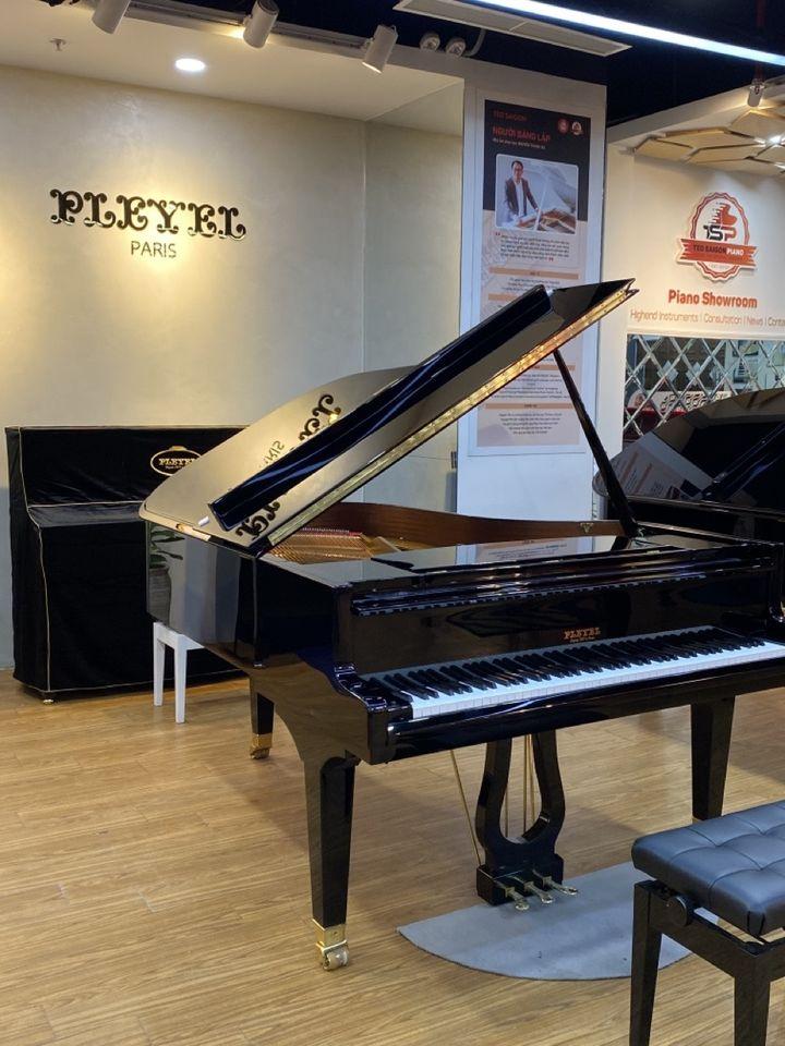 PLEYEL – Thương hiệu piano của các nhà soạn nhạc vĩ đại và giới quý tộc Châu Âu