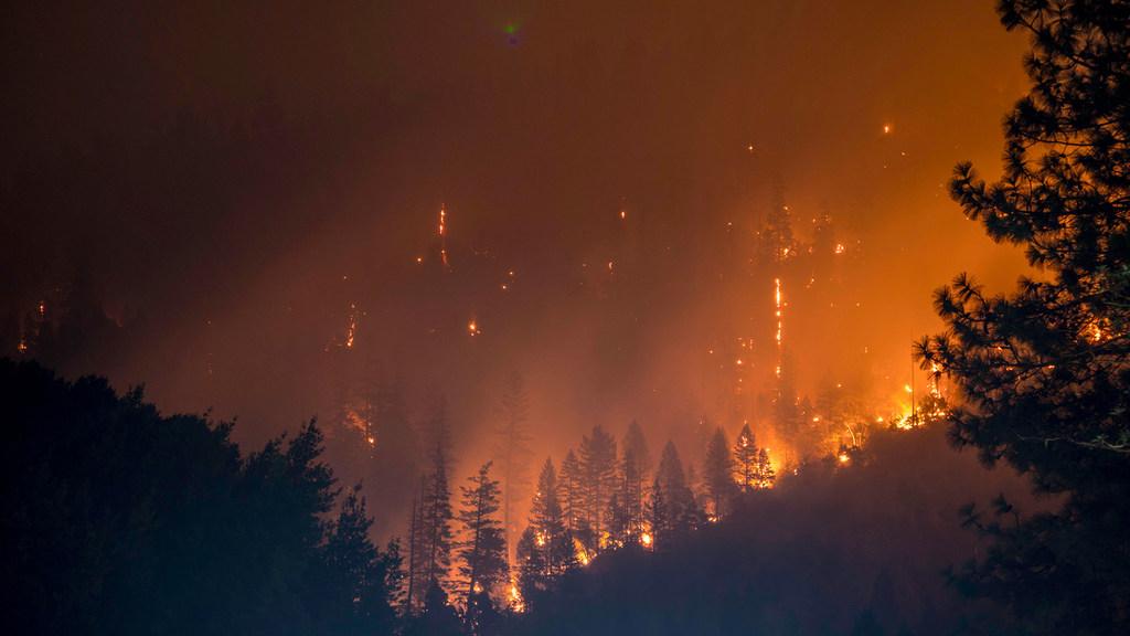 Biến đổi khí hậu vẫn chưa dừng lại trước đại dịch COVID-19