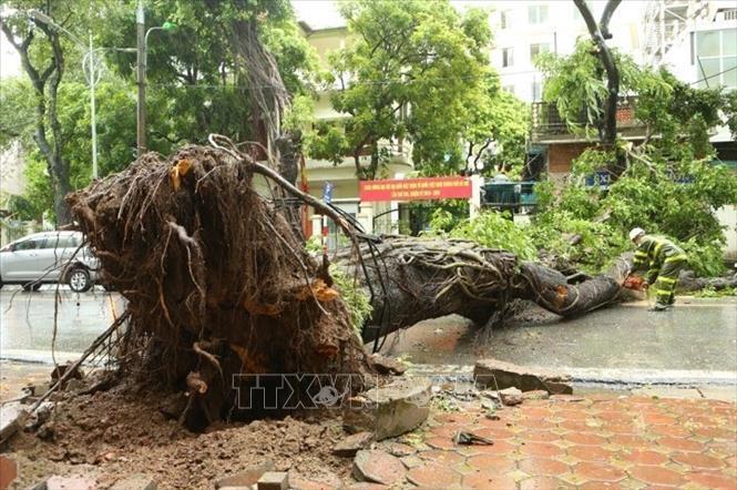 Còn khoảng 3 - 4 cơn bão ảnh hưởng đến đất liền trong năm nay
