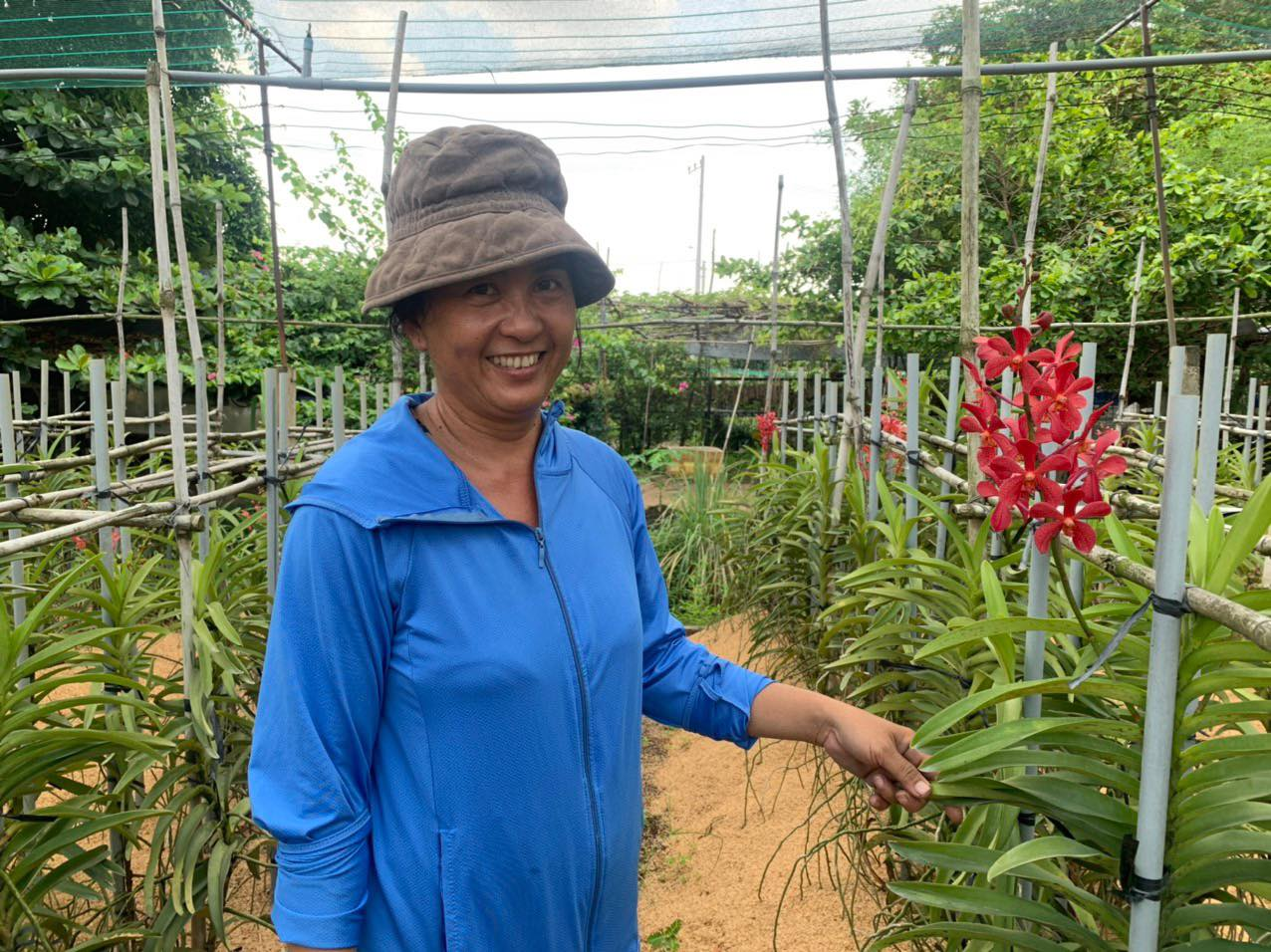 TP Hồ Chí Minh phấn đấu 50 số xã đạt chuẩn nông thôn mới kiểu mẫu