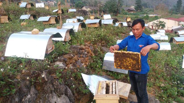 Đồng Văn Hà Giang đẩy mạnh thực hiện Chương trình OCOP