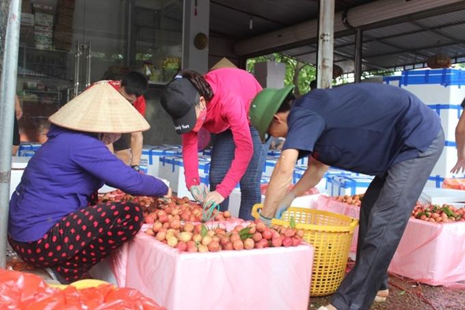 Xuất khẩu trên 2 000 tấn trái cây tươi đi Hoa Kỳ