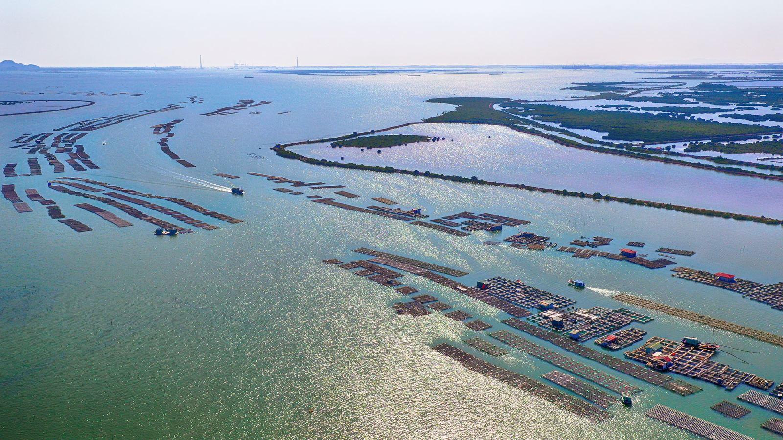 Thành lập Khu kinh tế ven biển Quảng Yên, tỉnh Quảng Ninh