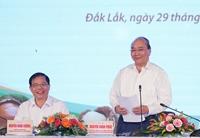 Thủ tướng Nguyễn Xuân Phúc Các địa phương cần xây dựng chiến lược phát triển cây mắc ca ở Việt Nam