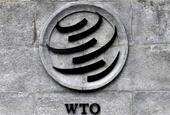 EU ủng hộ Nigeria và Hàn Quốc cho vị trí tân Tổng giám đốc WTO