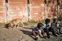Đại dịch đẩy 88–115 triệu người vào cảnh nghèo cùng cực