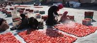 FAO Giá một số loại thực phẩm cao nhất trong nhiều tháng