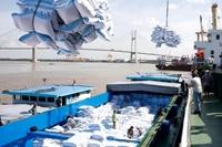 Giá trị xuất khẩu gạo đạt 2,4 tỷ USD