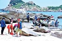 Bình Thuận Thu hút gần 70 nghìn tỷ đồng đầu tư vào du lịch