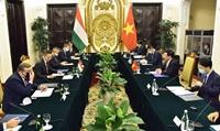 Thúc đẩy quan hệ Đối tác toàn diện Việt Nam - Hung-ga-ri