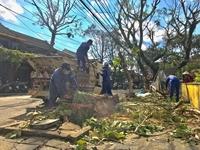Bão số 9 gây nhiều thiệt hại tại các tỉnh miền Trung và Tây nguyên