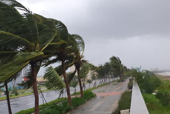 Nhiều thiệt hại nặng nề do bão số 9 gây ra