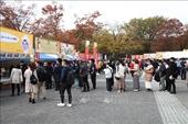 Khai mạc Lễ hội Việt Nam tại Nhật Bản