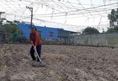 Khẩn trương khắc phục hậu quả mưa lũ tại các tỉnh miền Trung