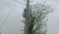 Hơn 250 000 khách hàng 3 tỉnh miền Trung mất điện do bão số 12