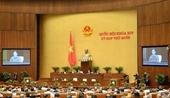 Gần 63 đại biểu Quốc hội không đồng ý tách Luật Giao thông đường bộ