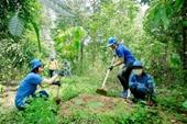 Học bổng tập huấn Thực hành canh tác sinh thái và bảo vệ rừng