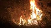 Huy động khoảng 1 100 người dập tắt đám cháy rừng trồng Sóc Sơn