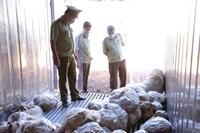 Phát hiện kho đông lạnh chứa trên 16 tấn thịt gia cầm đã bốc mùi tại Bình Phước