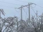 PC Sơn La khôi phục điện cho 100 khách hàng bị ảnh hưởng do băng tuyết