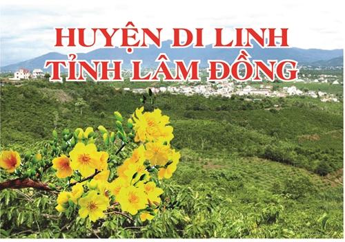 Huyện Di Linh Lâm Đồng  Tạo thế và lực cho giai đoạn phát triển mới